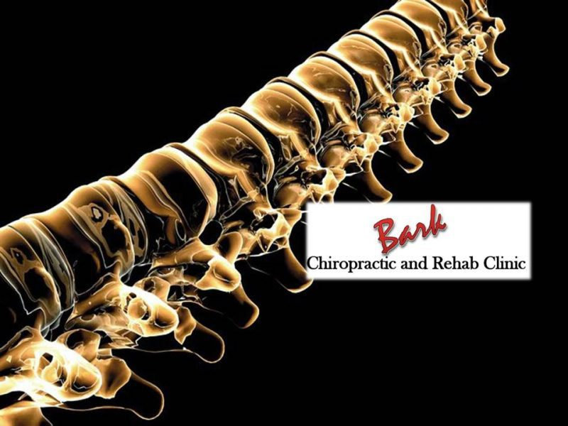 Bark Chiropractic & Rehab Clinic of Muscatine