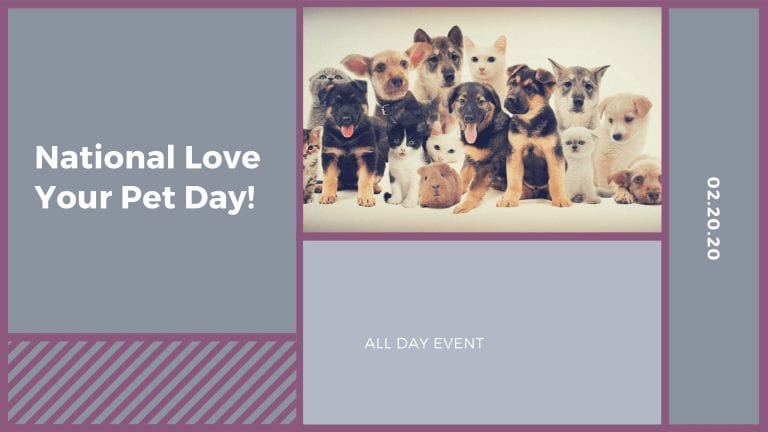 National Love Your Pet Day!