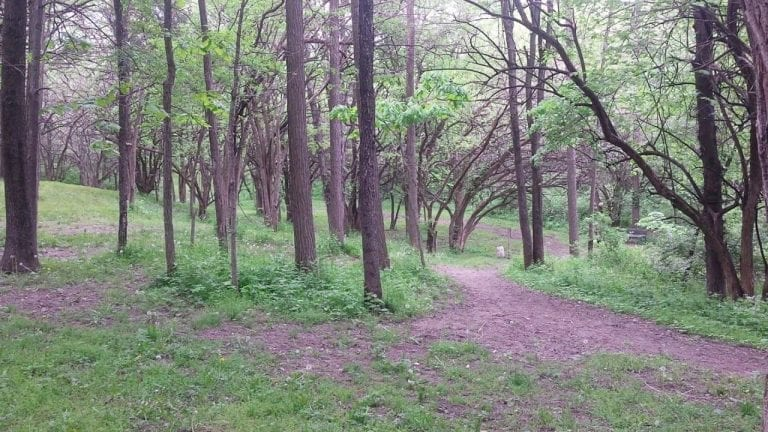 Muscatine disc golf course is open and ready for play