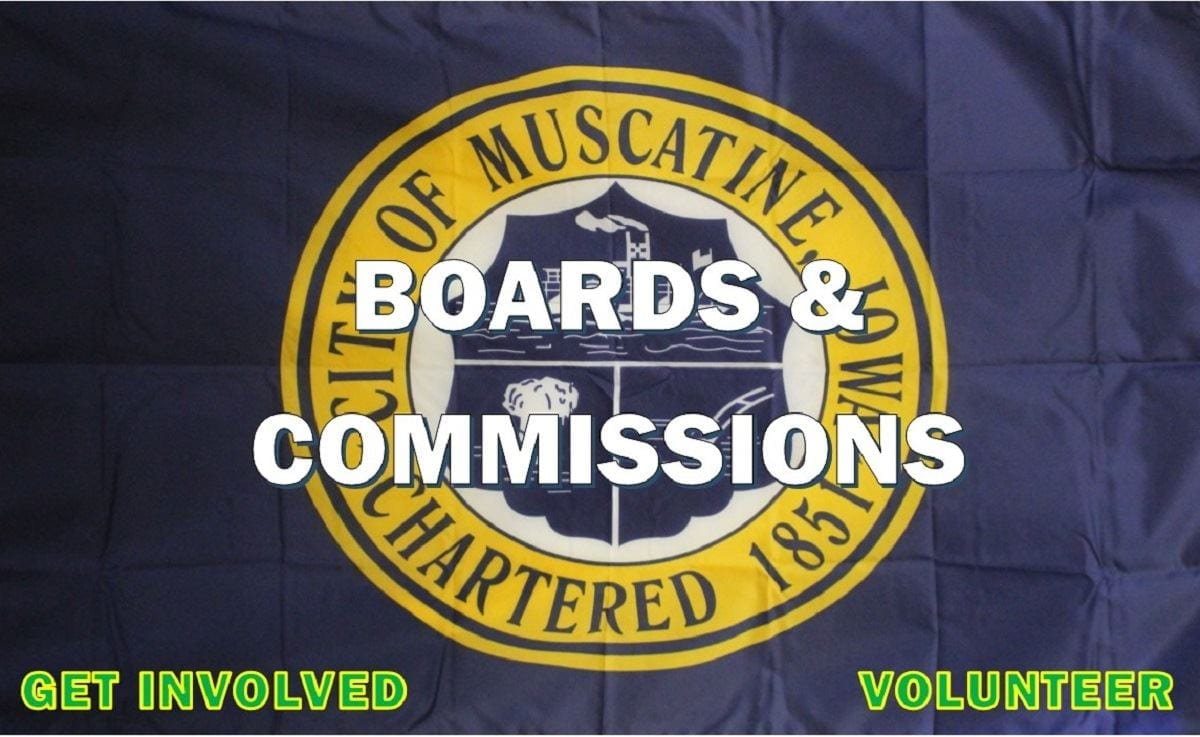 Board and Commissions graphic (JPG)