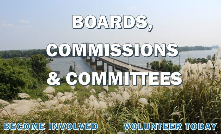 Two commissions seek applicants for board positions